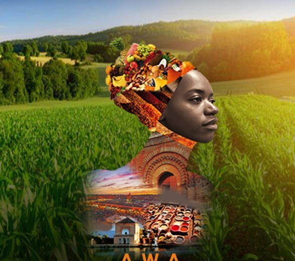 Ivory Coast / Marrakech will host the 2nd edition of African Women in Agriculture (Press release)